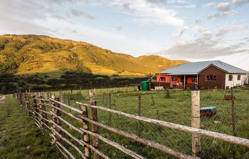 Comment un petit routard sud-africain fait une grande différence communautaire