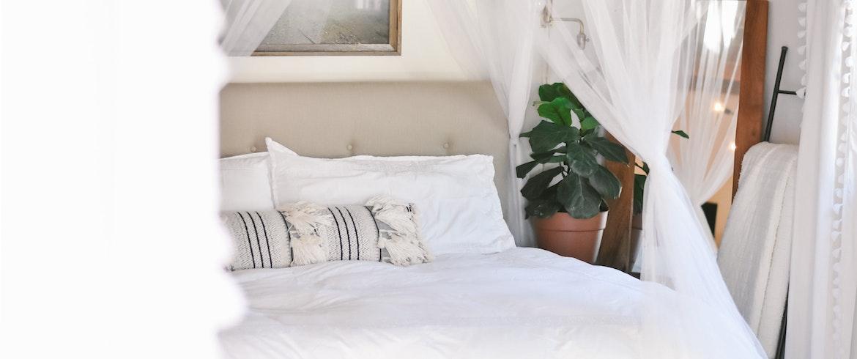 Oubliez vos allergies: 5 éco-hôtels sans allergies