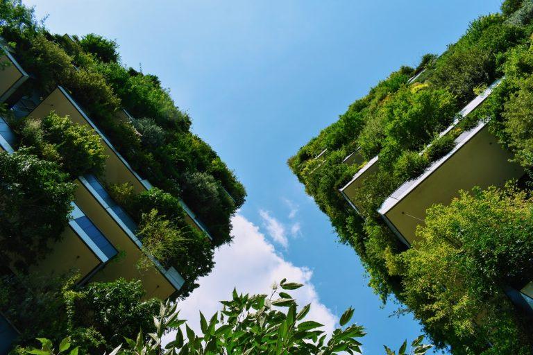 Architecture verte: ce qui fait d'une structure un «bâtiment vivant»