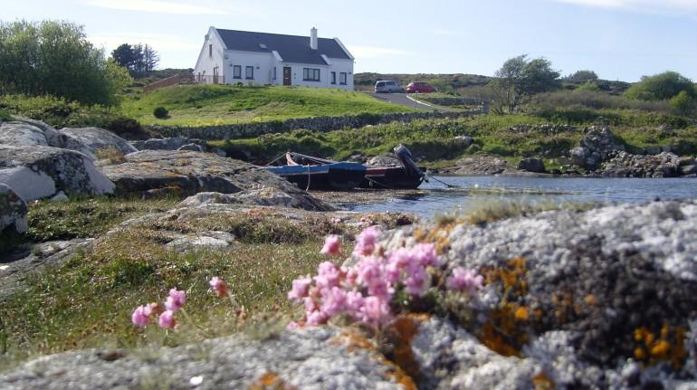 Rossroe Lodge, un B&B écologique en Irlande