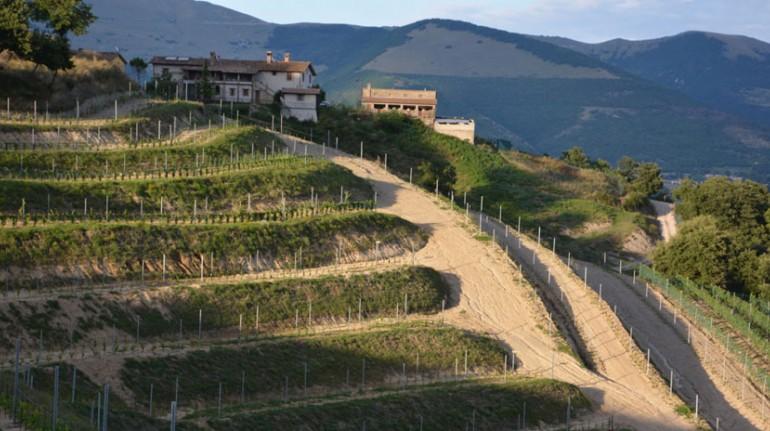 Une ferme sur les collines de Gubbio