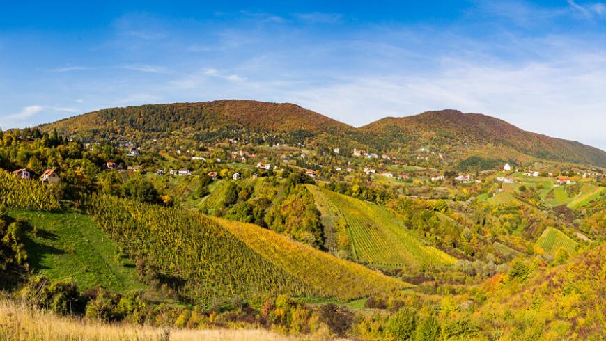 Montagne Plešivica: région croate de la Champagne