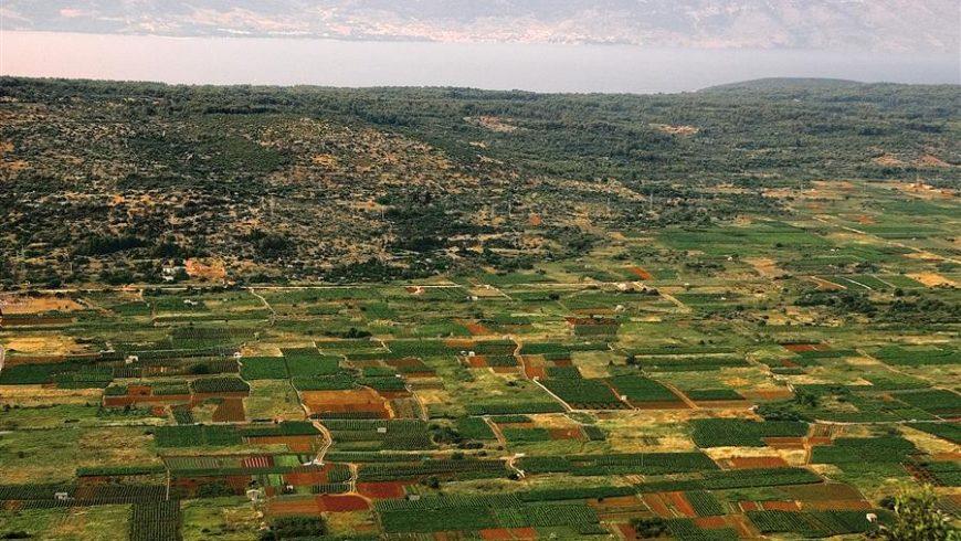 Hvar Starigrad plain