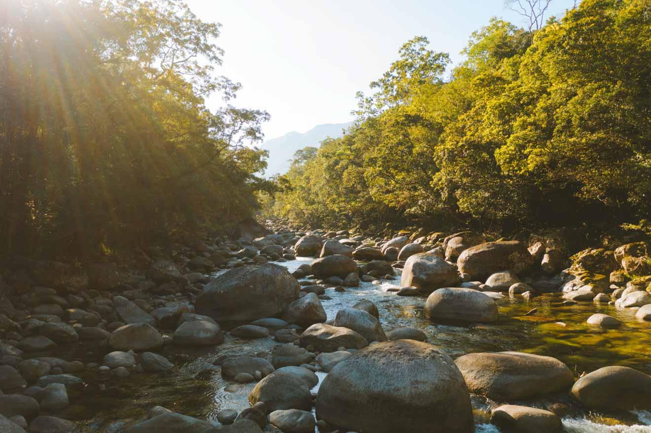 les activités du parc national de daintree à port douglas