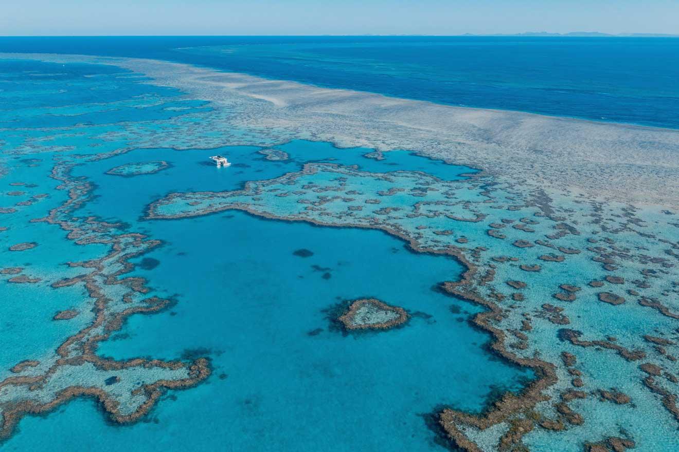 grande barrière de corail port douglas