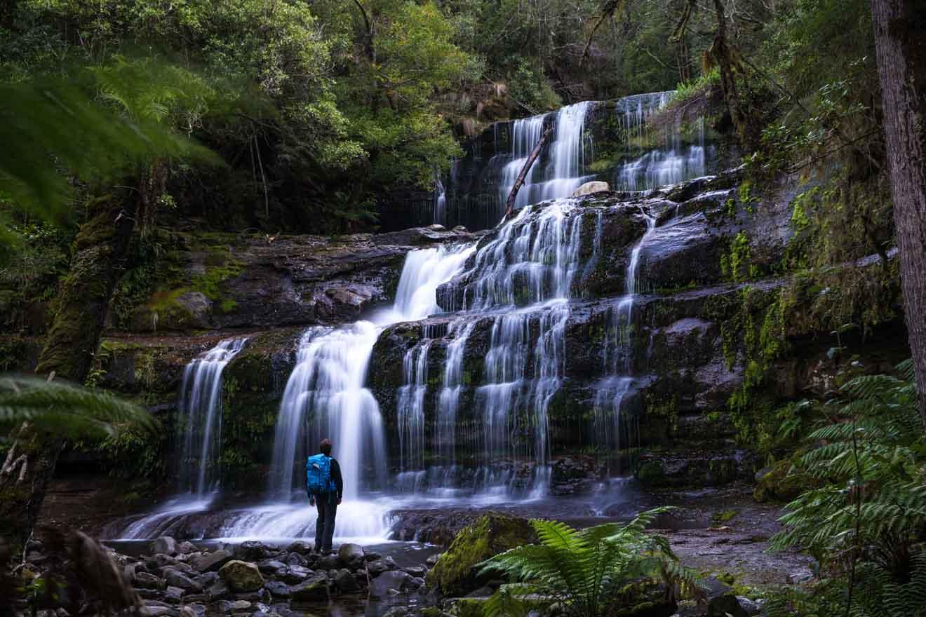 Détente en cascade Parc national de Mount Field en Tasmanie