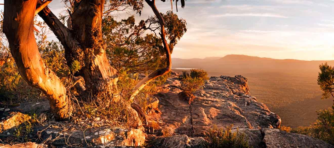 Randonnée des Grampians - Paysage de brousse australien Grampians National Park