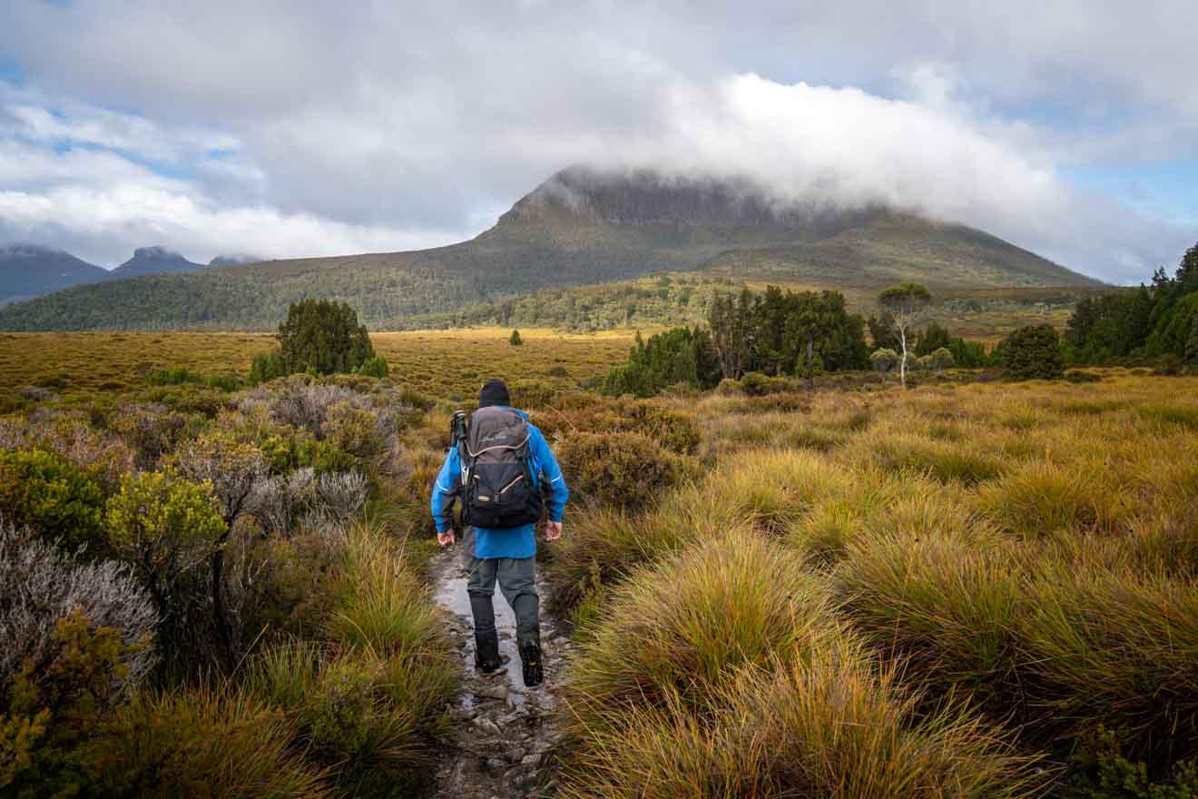 Marcher vers le Mt Pelion West, Overland Track - une visite autoguidée