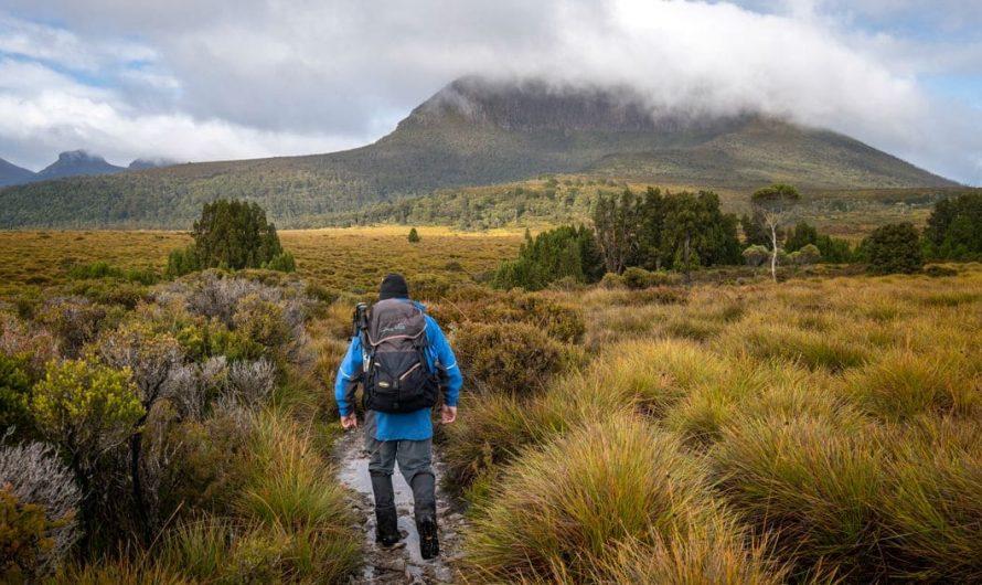 12 choses que vous devez savoir avant de parcourir la piste terrestre en Tasmanie