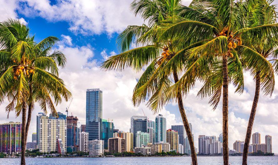 Les 7 meilleures choses à faire dans les Florida Keys avec des enfants