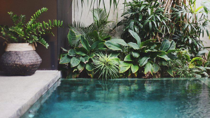 Rencontrez les hôtels innovants pour les leaders du voyage durable