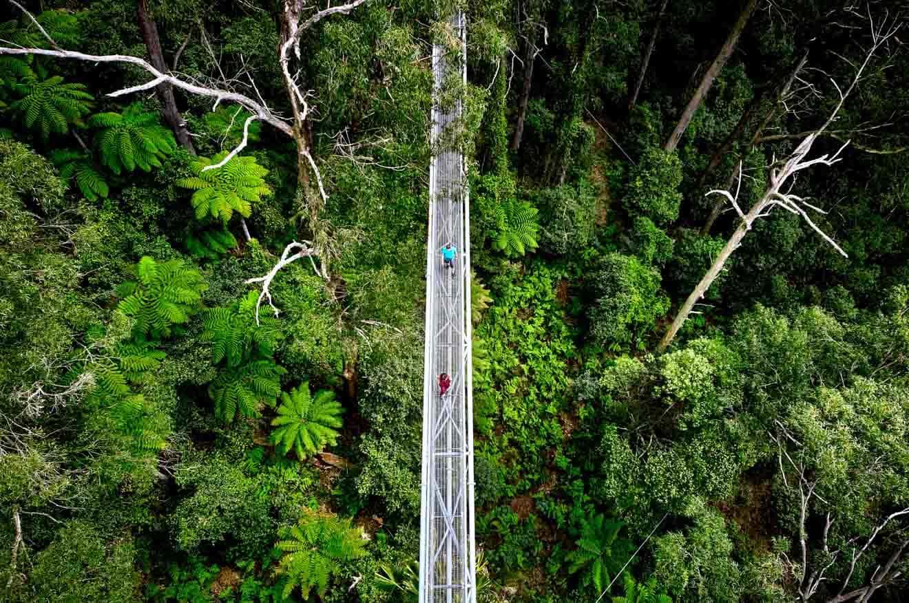 choses gratuites à faire à wollongong vacances scolaires - route Que faire à Wollongong