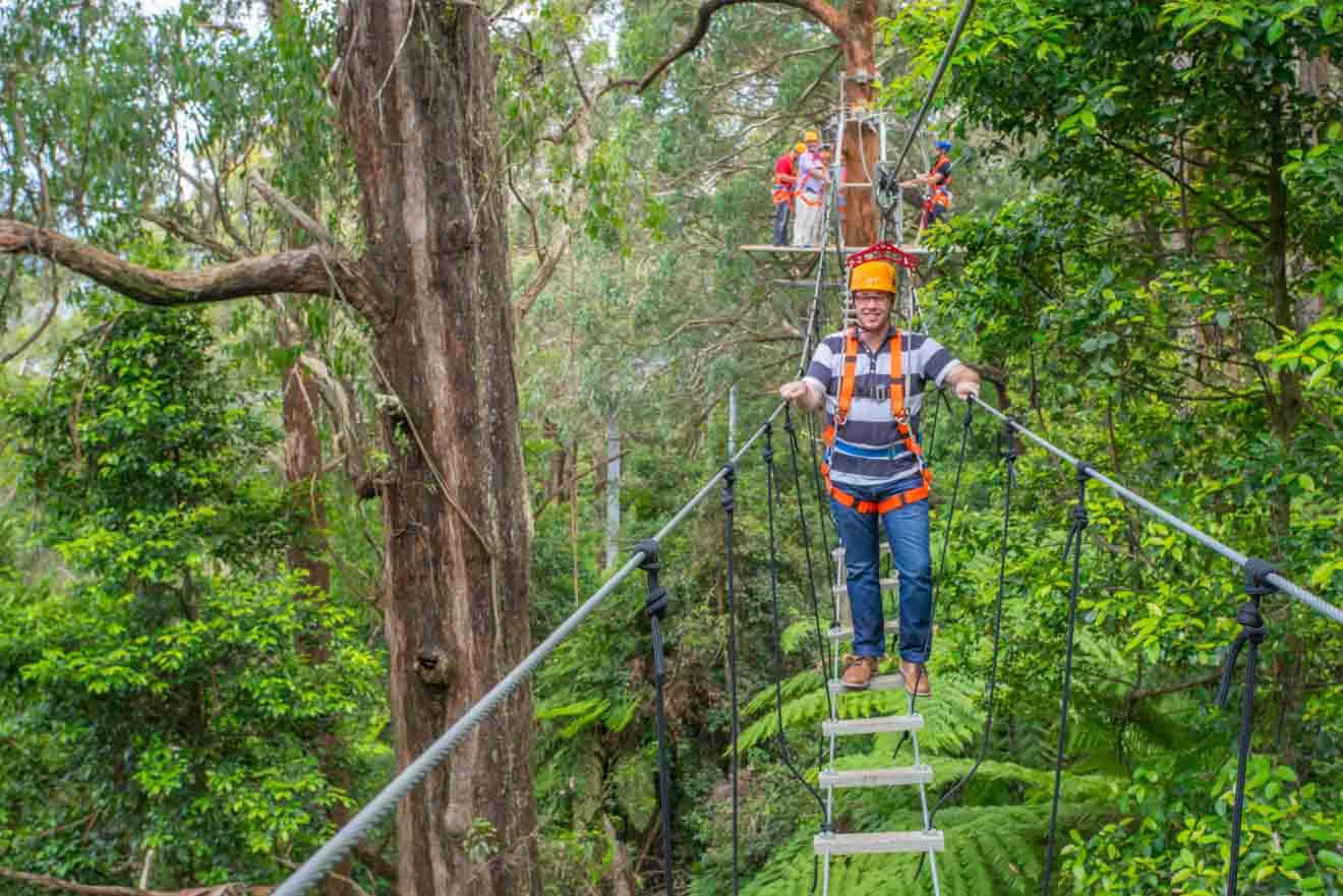 wollongong experiences - Illawarra region Que faire à Wollongong