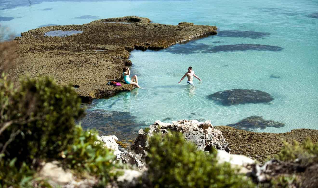 Kangaroo Island Resort - Vivonne Bay Beach Que faire à Kangaroo Island?