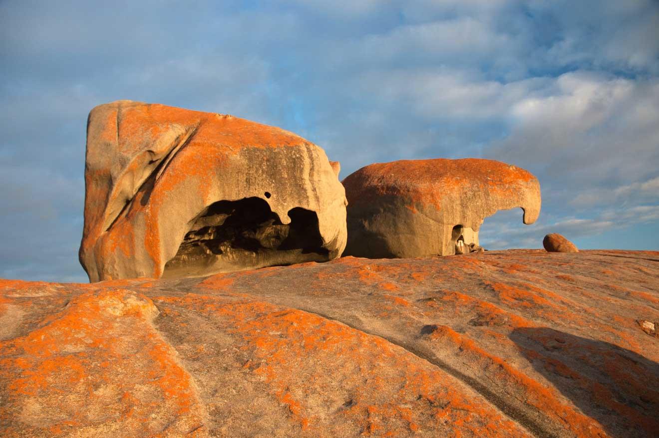 kangaroo island tours - Australie du Sud Que faire à Kangaroo Island