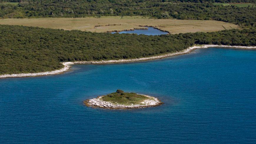 expériences écologiques en Istrie: observation des oiseaux