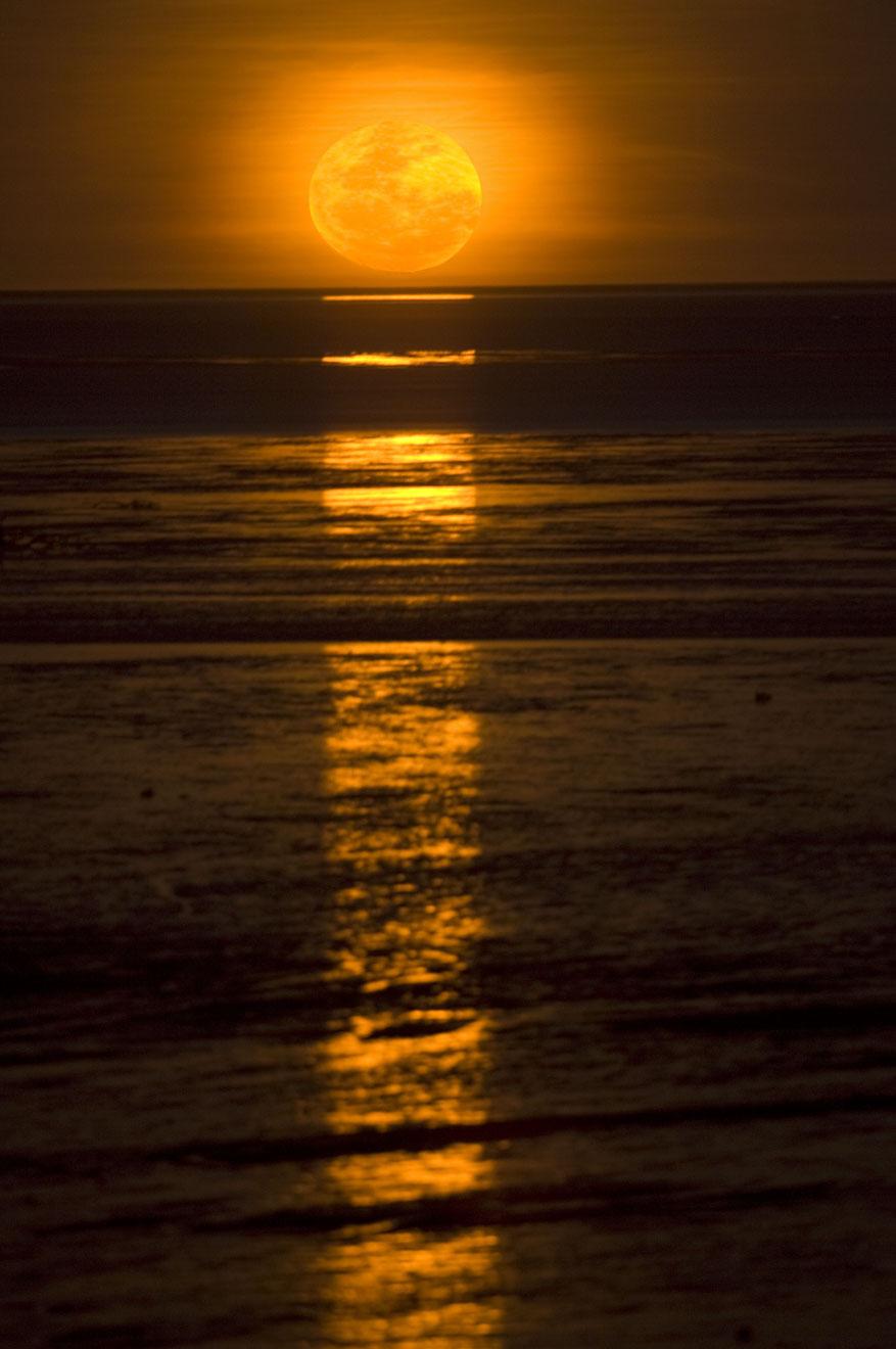 Escalier vers le phénomène de la Lune Choses à faire à Broome en Australie-Occidentale