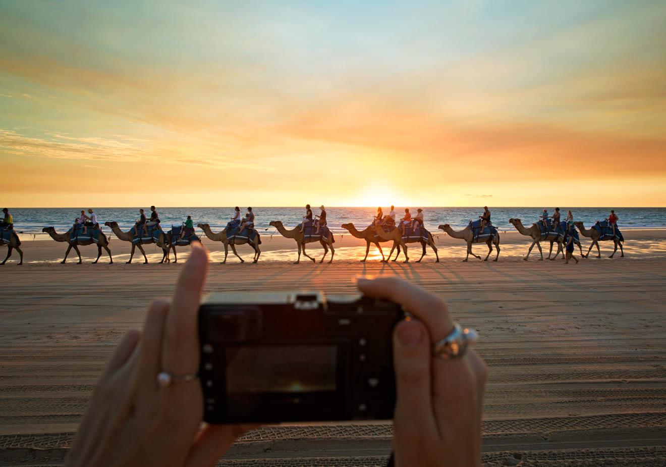 Des chameaux au coucher du soleil à Broome