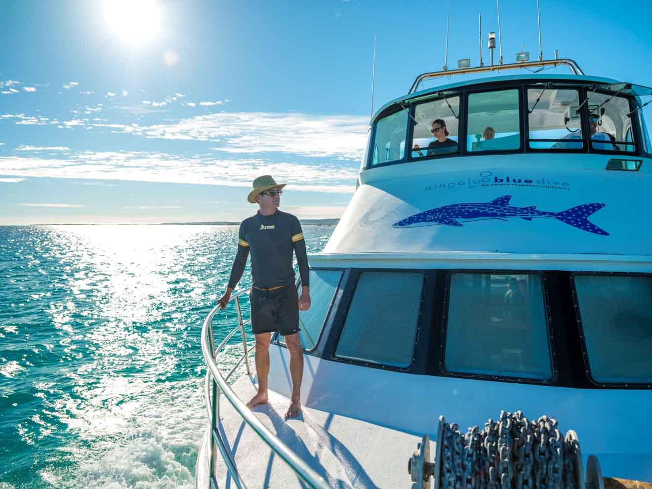 Visite du récif de Ningaloo dans le parc marin des requins baleines