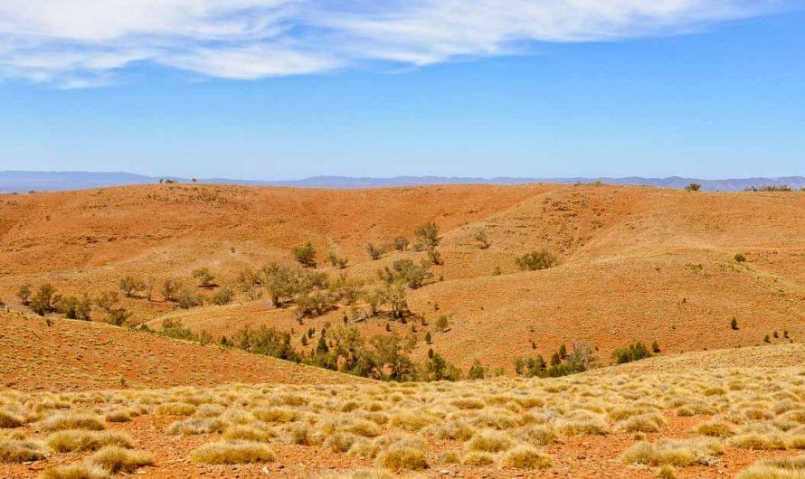 Votre guide de voyage complet pour Wilpena Pound et Flinders Range