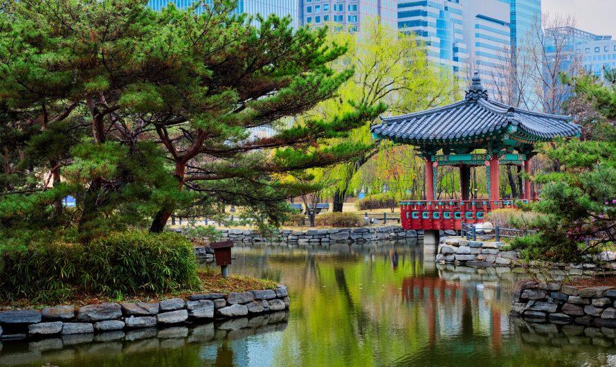 Le meilleur guide de voyage de Séoul pour les étudiants