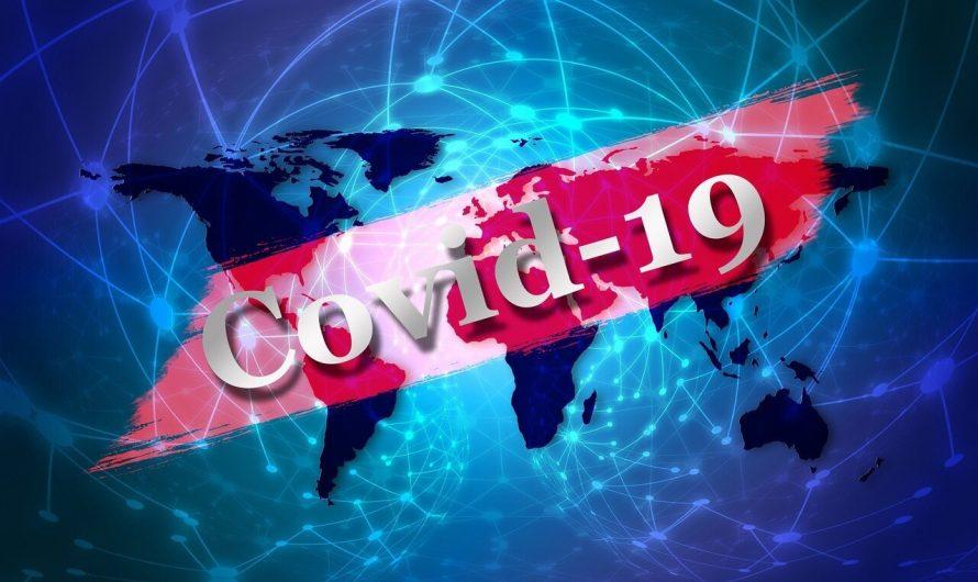 Le tourisme mondial a perdu 195 milliards de dollars de revenus en raison de la pandémie de COVID-19