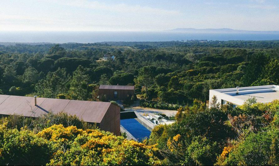 Villa Epicurea: Nature et Art pour vos vacances de rêve au Portugal