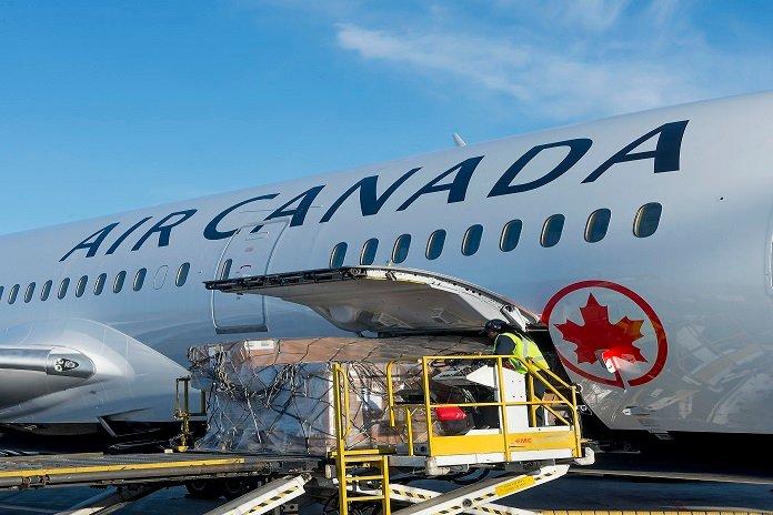 Air Canada continue de lutter contre le commerce illégal d'espèces sauvages