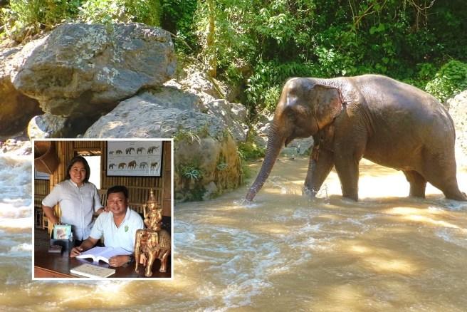 Un éléphant de Green Hill Valley Elephant Camp, l'État de Shan, au Myanmar. (Image de Hollis Burbank-Hammarlund). En médaillon: Tin Win Maw, fondateurs de GHV (à gauche) et Htun Htun Wynn (avec l'aimable autorisation de GHV).