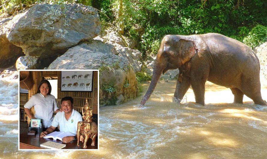 Tourisme en crise: un camp d'éléphants du Myanmar et une communauté pivotent vers le plan B