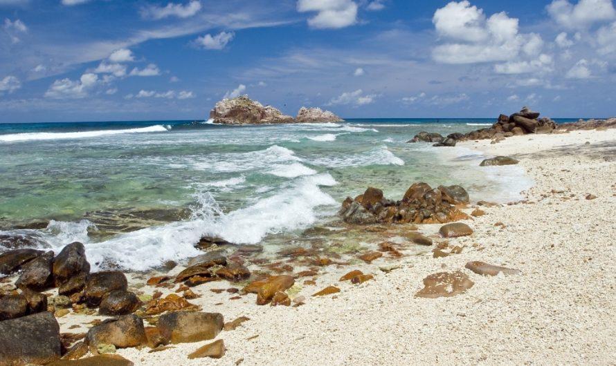 Du surtourisme à l'absence de tourisme aux Seychelles: et maintenant pour la conservation?