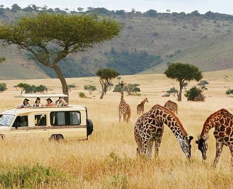 Les États de l'Afrique de l'Est se réunissent pour la Journée mondiale du tourisme