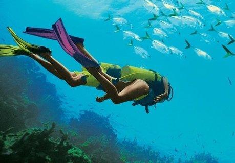 Sandals and Beaches Resorts reçoit 9 prix de plongée