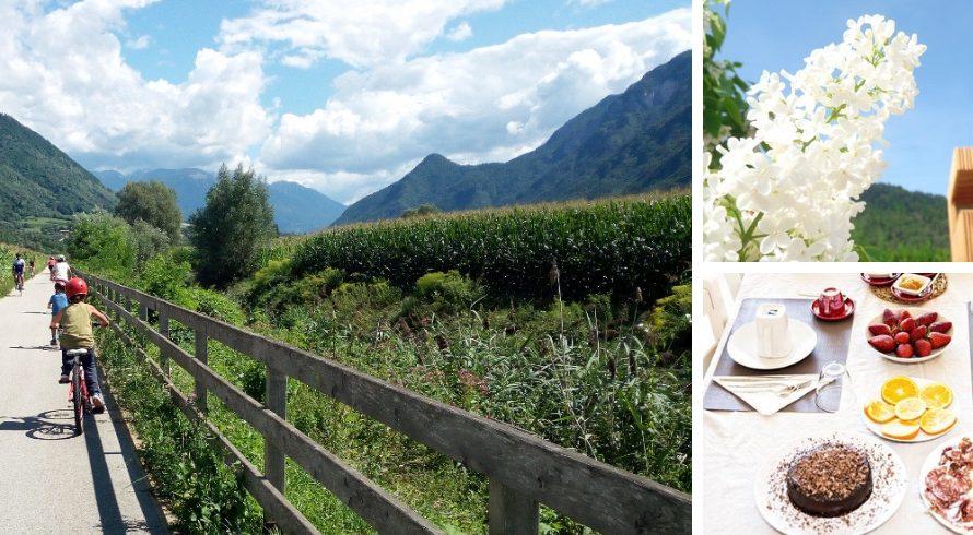 Casa sul Lago une grande expérience pour des vacances vertes