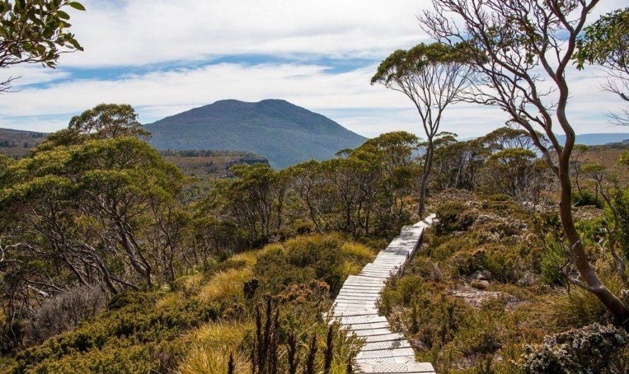 Écotourisme régénératif: poser des questions est le meilleur point de départ