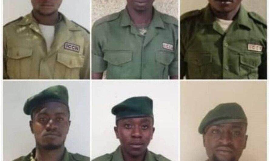 6 rangers tués dans une attaque terroriste contre le parc national des Virunga