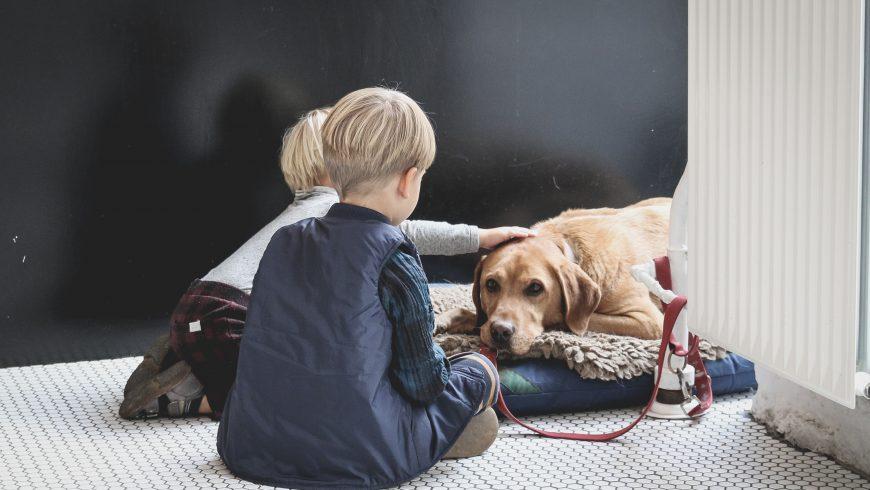 chien enfants