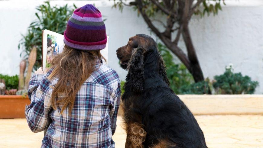 Le meilleur ami de l'homme chien