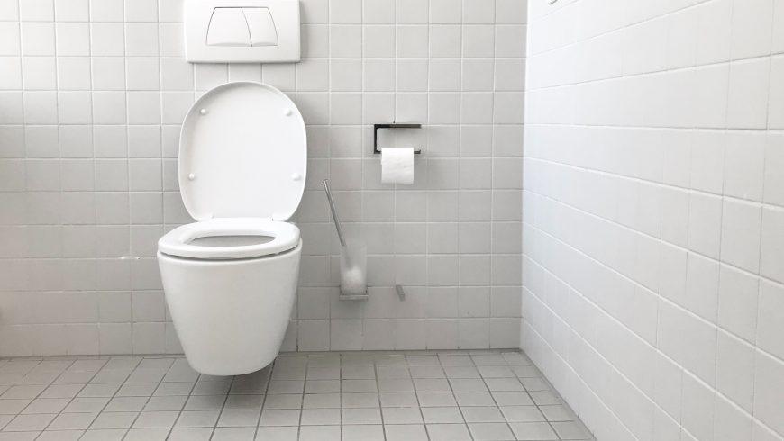 toilettes à double chasse