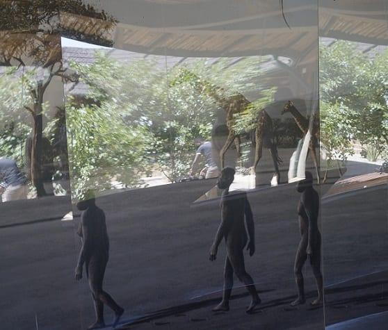 Nouvelles découvertes de l'homme primitif sur le site touristique de la gorge d'Olduvai