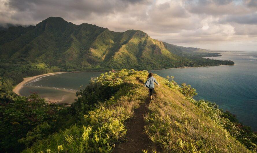 3 plages colorées étonnantes à travers les îles hawaïennes-Ecobnb