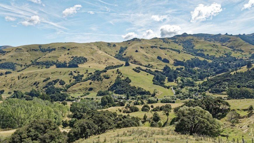 Collines de la Nouvelle-Zélande