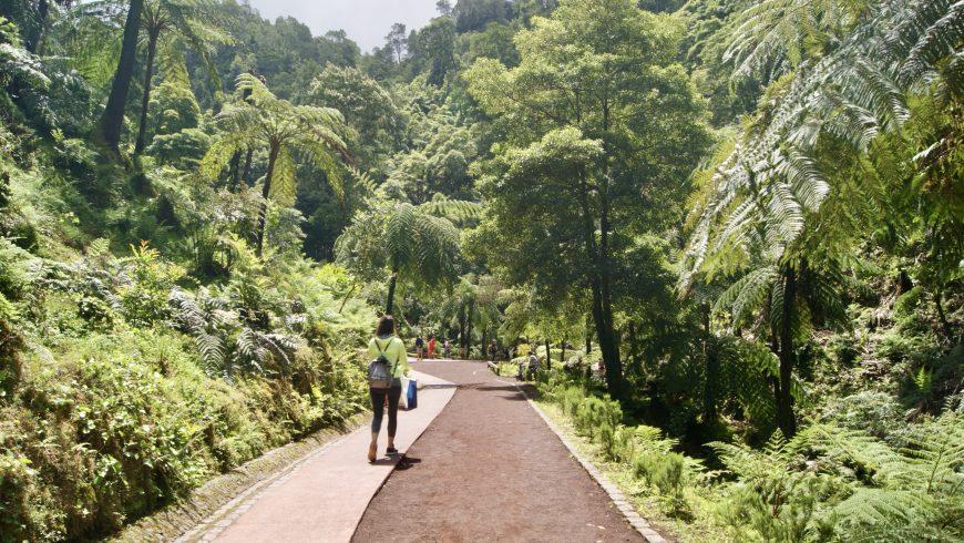 Top 10 des parcs naturels des Açores pour s'aventurer dans la nature