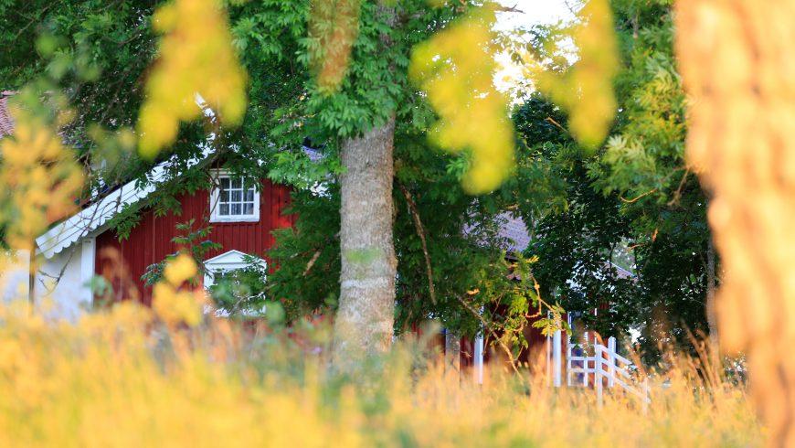 Comment construire votre propre maison verte