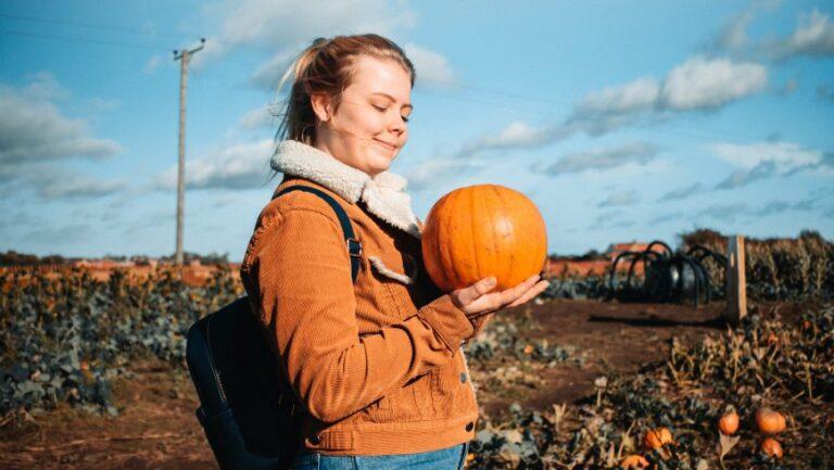 Voyage régénératif en Croatie: Top 4 des expériences de la ferme à la table