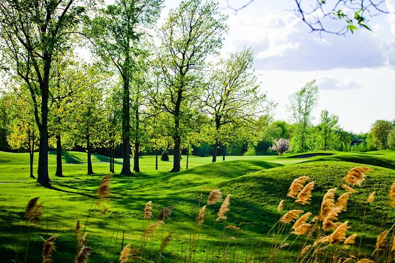 Ancien et beau parcours de golf cahoteux