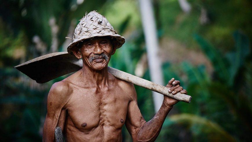 agriculteur en Asie