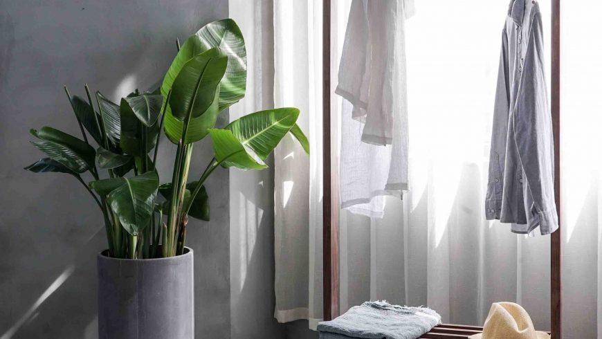 conseils d'achat écologiques: style de vie minimal
