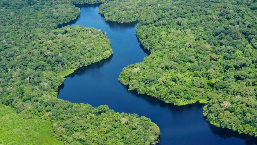Amazonie, l'un des endroits susceptibles de disparaître à cause du changement climatique