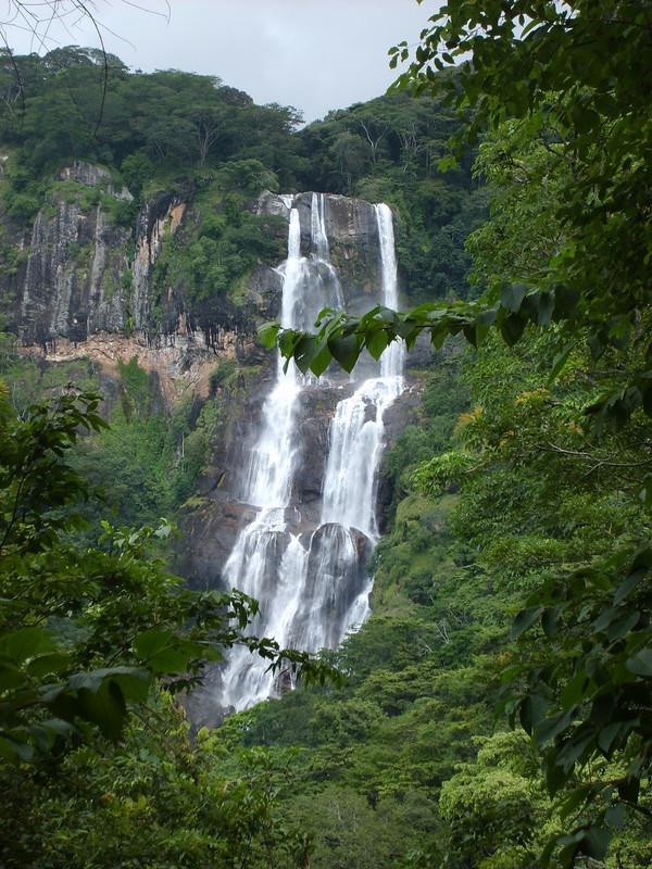 S5003233 PN des montagnes d'Udzungwa: chutes de Sanje